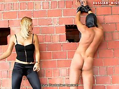 superb ball busting being awarded to horny slave in femdom porn