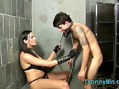 transsexual mistress abuses her slave