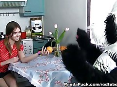 Strap On Sex In The Kitchen With A Panda